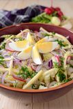 Cauliflower salad with potatoes, hard cheese, eggs, red onion and radish Stock Image