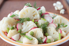 Cauliflower salad with radish and greens Stock Images