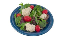 cauliflower salad tomato Royaltyfri Foto