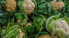 Cauliflower for sale at the street farmers market royalty free stock photos