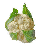 Cauliflower on a white background Royalty Free Stock Images