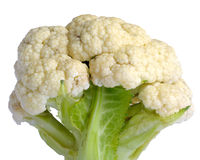 Cauliflower on White Background Stock Image