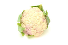 Cauliflower in a white background Royalty Free Stock Images