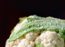 Cauliflower Royalty Free Stock Photos