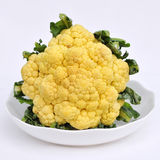 Cauliflower on white dish Stock Photography
