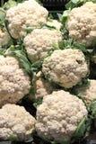 cauliflowers свежие Стоковая Фотография