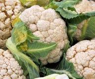 cauliflowers Стоковая Фотография RF