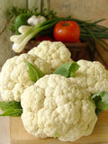 Cauliflowers. Summer vegs Stock Image