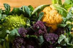 Cauliflowers and broccoli. Cornucopia of vegetables from the brassicaceae family: yellow cauliflower, purple sprouting broccoli, cabbage leaves, Romanesco Royalty Free Stock Photography
