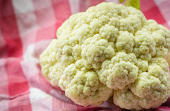 Cauliflowers Stock Image
