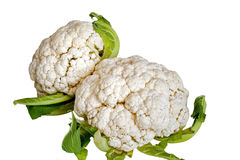 Cauliflowers in isolated Stock Photo