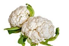 Cauliflowers in isolated Stock Photo