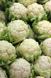 Cauliflowers at the market. Vertical picture Stock Photos