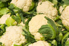 Cauliflowers market Stock Image