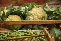 Cauliflowers at a market stall Stock Images