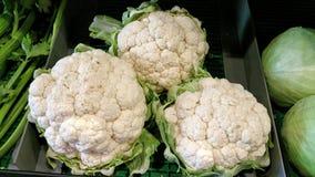 Cauliflowers. Three big white fresh cauliflowers on market stall display Stock Image