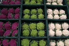 Cauliflowers - White - Green - Purple Stock Photo