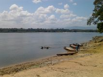 caura bank of the river, across the jungle in Bolivar State, Venezuela royalty free stock photo