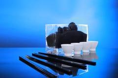 Causa degli azzurri dei sushi per 4 Fotografia Stock Libera da Diritti