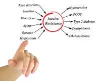 Causas y efectos de la resistencia a la insulina fotografía de archivo libre de regalías