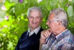 Causerie de vieux hommes Image libre de droits