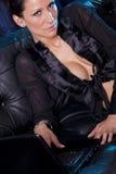 Causerie sexy - femme attirante à l'aide de l'ordinateur portable Photographie stock