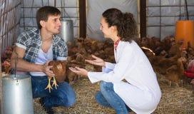 Causerie vétérinaire de femme avec le travailleur de ferme Photos libres de droits