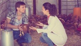 Causerie vétérinaire de femme avec le travailleur de ferme Photos stock