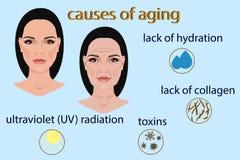 Causes du vieillissement, de l'illustration de vecteur avec deux visages et des petites photos Photo stock
