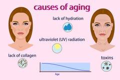 Causes du vieillissement, de l'illustration de vecteur avec deux visages et des petites photos sur le fond clair Images libres de droits