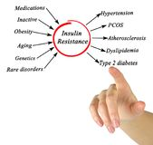 Causes of Insulin Resistance. Woman presenting Causes of Insulin Resistance Stock Images