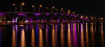 causewaymacarthur Royaltyfri Bild