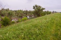 Causey i naturreserv Arkivfoton