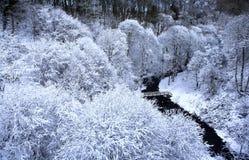 causey śnieg Fotografia Stock