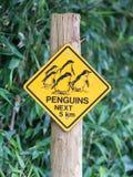 Cautela del segnale stradale per i pinguins degli uccelli Fotografie Stock