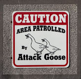 Caution area patrolled by attack goose. Sign isolated on granite stone Stock Photos