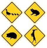 Caution Duck Sign Deer Hedgehog Frog Stock Photos