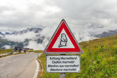 Caution marmots traffic sign on an Alpine road. In Austria Stock Photos