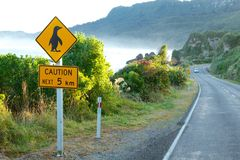 Caution penguin sign Royalty Free Stock Photos