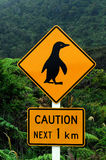 Caution Penguins Royalty Free Stock Photography
