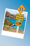 Caution penguins road sign in New Zealand, instanat photo frame Stock Photos