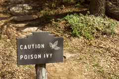 Caution Poison Ivy. Sign reading Caution Poison Ivy in forest setting Royalty Free Stock Images