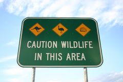Caution road sign. For crossing area full of wildlife. Australia Stock Photo