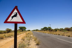 Caution: road sign of wild annimals crossing. A warning road sign to take caution of animals (Kudu) crossing the road causing potential danger to traveling Royalty Free Stock Image