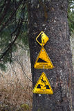 Caution signs posted on a tree warning of avalanche danger. Stock Photo