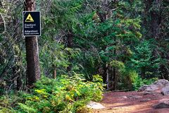 A caution steep hill sign on a edge of a trail.  Royalty Free Stock Photos