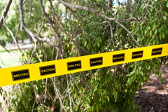 Caution tape, trees. Caution tape in a park after a storm Stock Photos