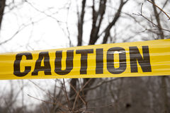 Caution Tape. By a tree in the woods royalty free stock photos