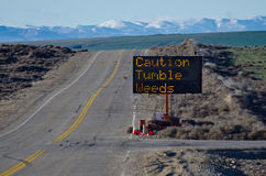Caution Tumbleweeds Road Sign Royalty Free Stock Images