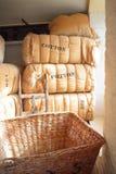 Cautions de coton Photographie stock libre de droits